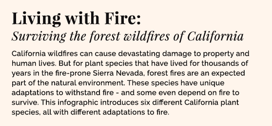 Living with fire: Surviving the forest wildfires of California